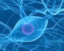 ProgettAzione  e la Settimana del Cervello: una serie di iniziative per sensibilizzare l'opinione pubblica sull'importanza della prevenzione