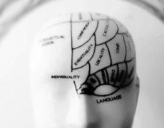 Potenziamento Cognitivo a distanza